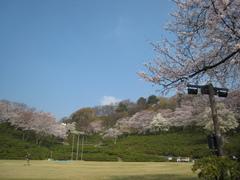 IMG_西山公園1113.JPG