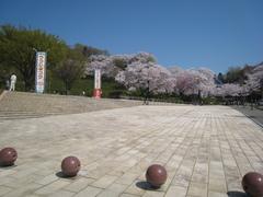 IMG_西山公園1208.JPG