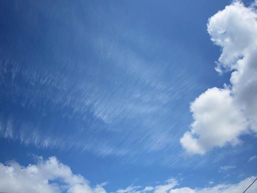 さばえ夏雲のサムネール画像